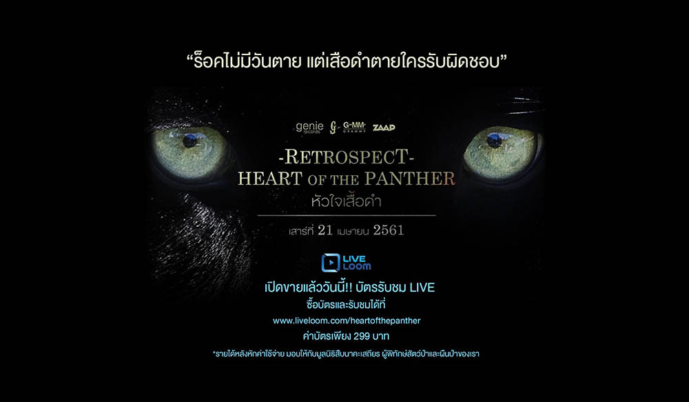ชมย้อนหลัง Retrospect Heart Of The Panther